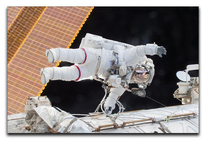 Space Walk Canvas Print or Poster