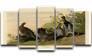Spotted Grouse by Audubon 5 Split Panel Canvas - Canvas Art Rocks - 1