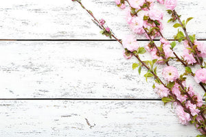 Spring flowering branch on white wooden Wall Mural Wallpaper - Canvas Art Rocks - 1