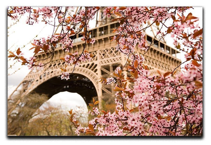Spring in Paris Canvas Print or Poster