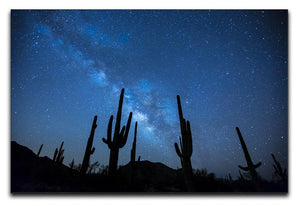 Star Night Captus Print - Canvas Art Rocks - 1