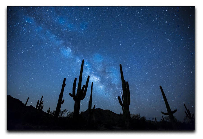 Star Night Captus Canvas Print or Poster