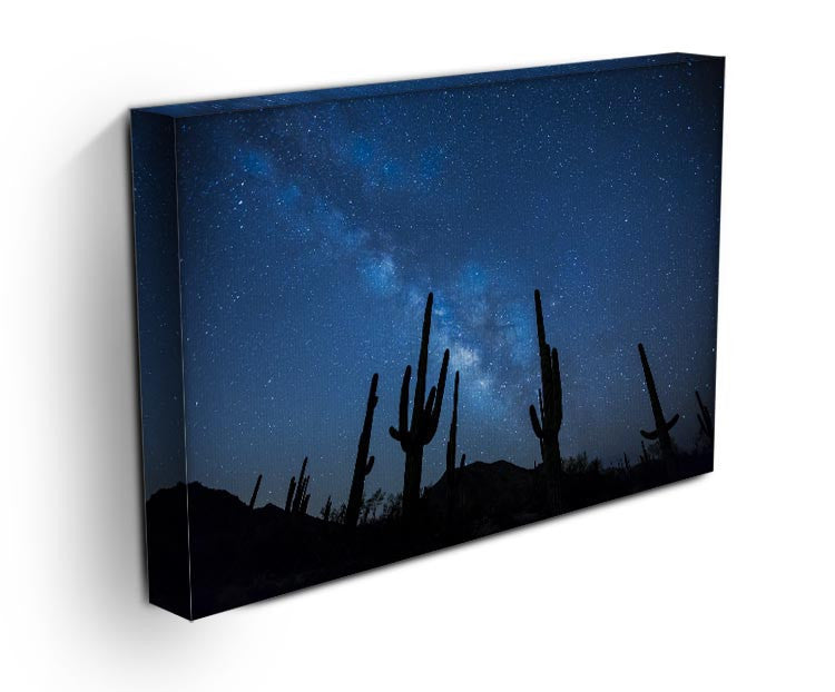 Star Night Captus Print - Canvas Art Rocks - 3