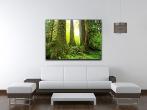 Sunny beams in forest Canvas Print or Poster - Canvas Art Rocks - 4