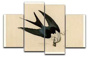 Swallow tailed Hawk by Audubon 4 Split Panel Canvas - Canvas Art Rocks - 1