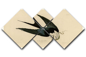 Swallow tailed Hawk by Audubon 4 Square Multi Panel Canvas - Canvas Art Rocks - 1