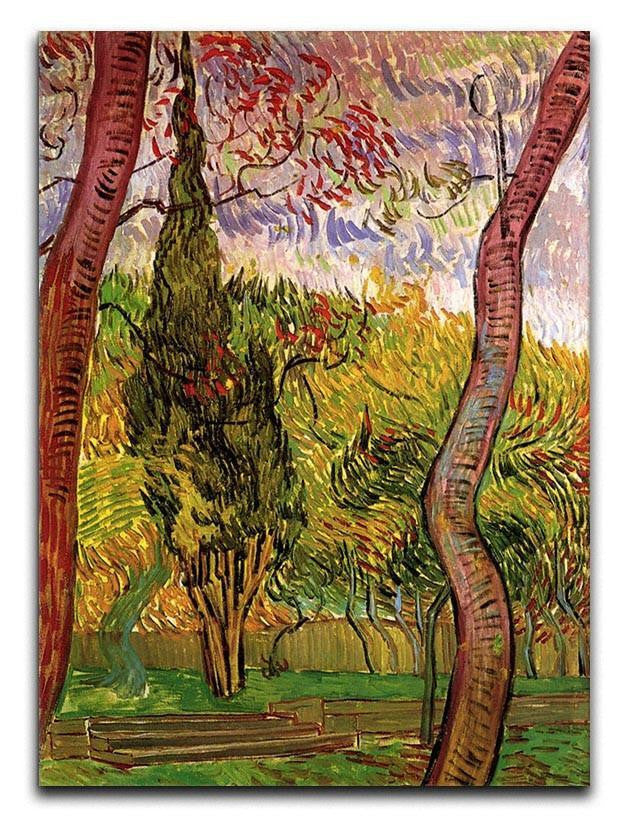 The Garden of Saint-Paul Hospital 2 by Van Gogh Canvas Print or Poster