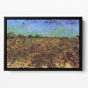 The Green Vineyard by Van Gogh Floating Framed Canvas