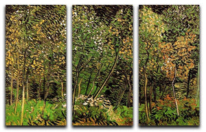 The Grove by Van Gogh 3 Split Panel Canvas Print - Canvas Art Rocks - 4