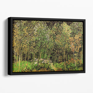 The Grove by Van Gogh Floating Framed Canvas