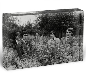 The Moody Blues in a field Acrylic Block - Canvas Art Rocks - 1