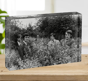 The Moody Blues in a field Acrylic Block - Canvas Art Rocks - 2