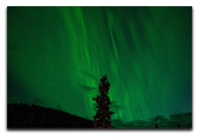 The Northern Lights Canvas Print or Poster