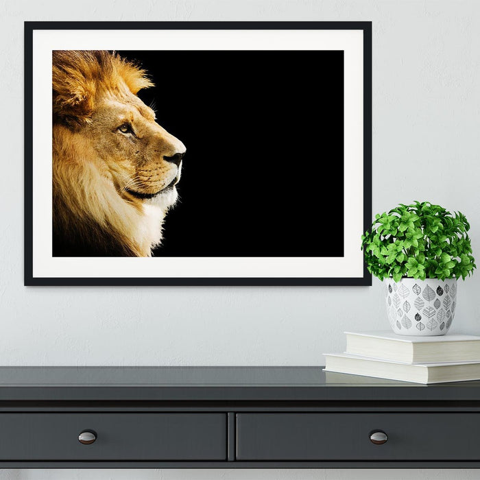The king of all animals portrait Framed Print