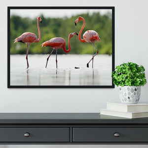 The pink Caribbean flamingo Framed Print - Canvas Art Rocks - 2