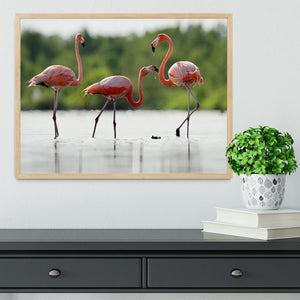 The pink Caribbean flamingo Framed Print - Canvas Art Rocks - 4