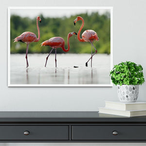 The pink Caribbean flamingo Framed Print - Canvas Art Rocks -6
