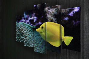 The yellow fish 5 Split Panel Canvas  - Canvas Art Rocks - 2