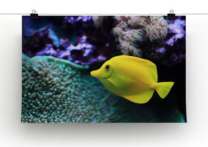 The yellow fish Canvas Print or Poster - Canvas Art Rocks - 2