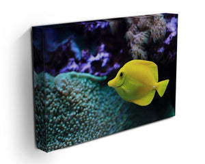 The yellow fish Canvas Print or Poster - Canvas Art Rocks - 3