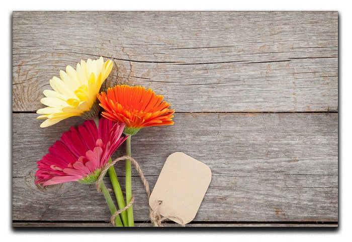 Three colorful gerbera flowers Canvas Print or Poster