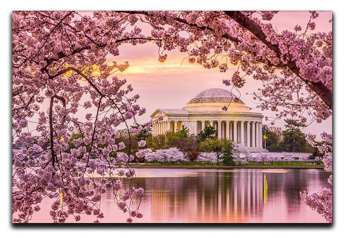 Tidal Basin and Jefferson Memorial cherry blossom season Canvas Print or Poster