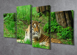 Tiger on the green grass 4 Split Panel Canvas - Canvas Art Rocks - 2