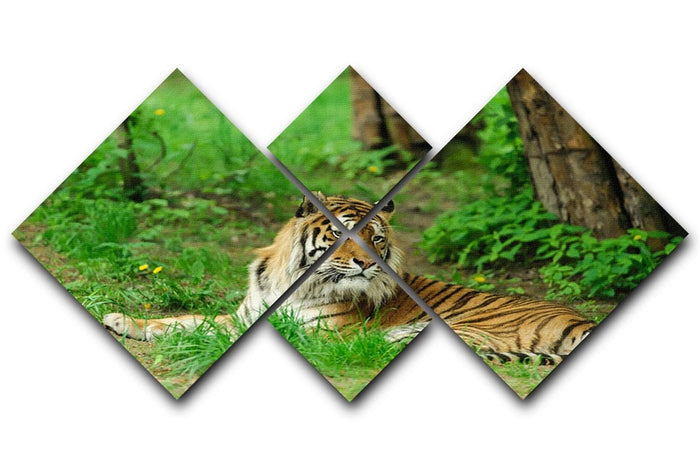 Tiger on the green grass 4 Square Multi Panel Canvas