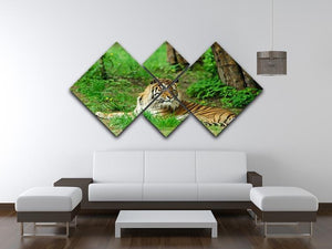Tiger on the green grass 4 Square Multi Panel Canvas - Canvas Art Rocks - 3