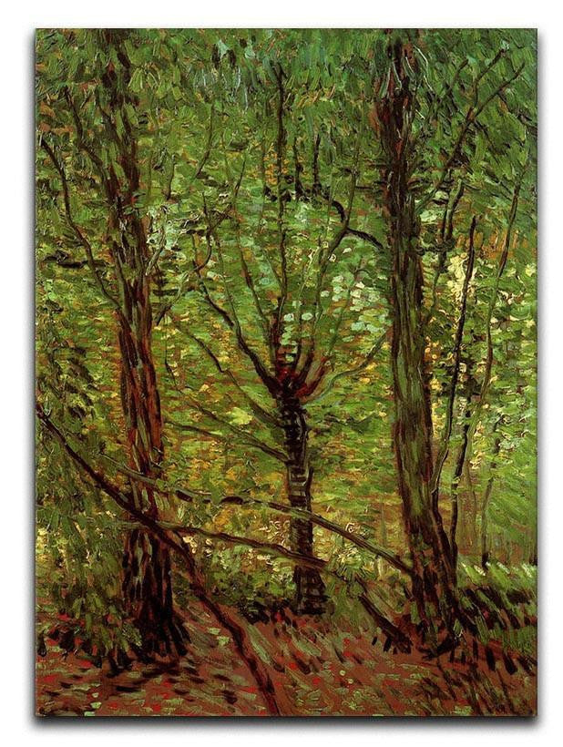 Trees and Undergrowth by Van Gogh Canvas Print or Poster