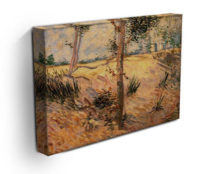 Trees in a Field on a Sunny Day by Van Gogh Canvas Print & Poster - Canvas Art Rocks - 3
