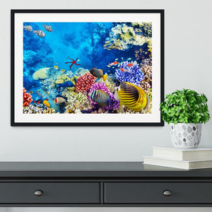 Tropical fish Framed Print - Canvas Art Rocks - 1