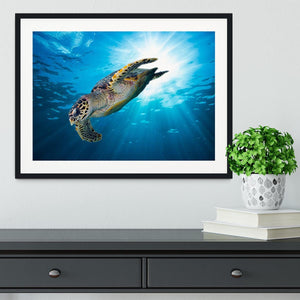 Turtle dive Framed Print - Canvas Art Rocks - 1