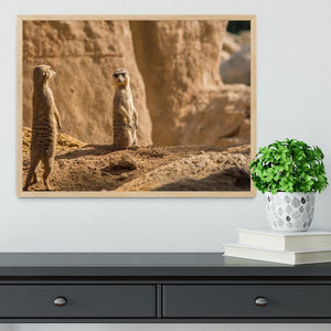 Two alert Meerkats in the desert Framed Print - Canvas Art Rocks - 4