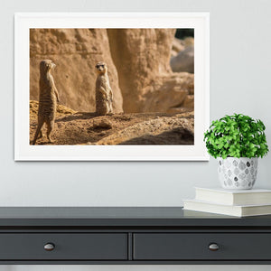 Two alert Meerkats in the desert Framed Print - Canvas Art Rocks - 5