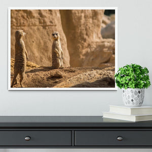 Two alert Meerkats in the desert Framed Print - Canvas Art Rocks -6