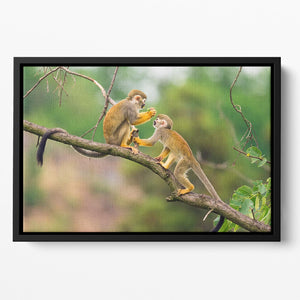Two common squirrel monkeys Floating Framed Canvas - Canvas Art Rocks - 2