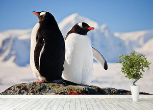 Two penguins dreaming sitting on a rock Wall Mural Wallpaper - Canvas Art Rocks - 4