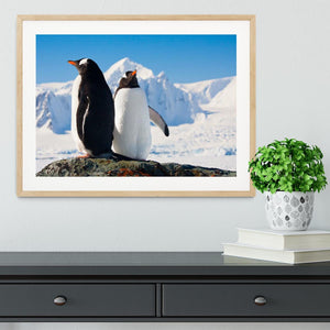 Two penguins dreaming together sitting on a rock Framed Print - Canvas Art Rocks - 3