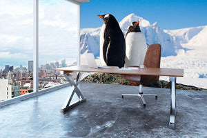 Two penguins dreaming together sitting on a rock Wall Mural Wallpaper - Canvas Art Rocks - 3