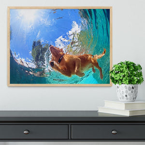 Underwater photo of golden labrador retriever puppy Framed Print - Canvas Art Rocks - 4