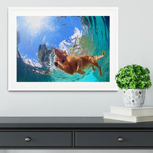 Underwater photo of golden labrador retriever puppy Framed Print - Canvas Art Rocks - 5