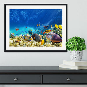 Underwater world Framed Print - Canvas Art Rocks - 1