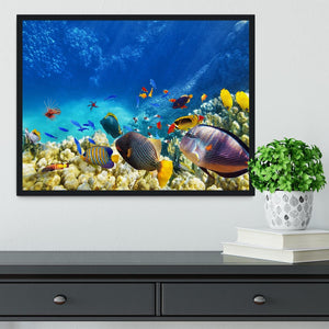 Underwater world Framed Print - Canvas Art Rocks - 2