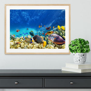 Underwater world Framed Print - Canvas Art Rocks - 3