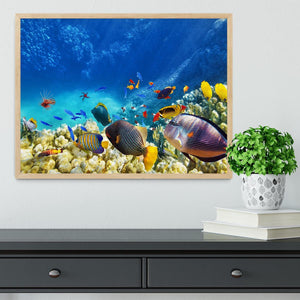 Underwater world Framed Print - Canvas Art Rocks - 4