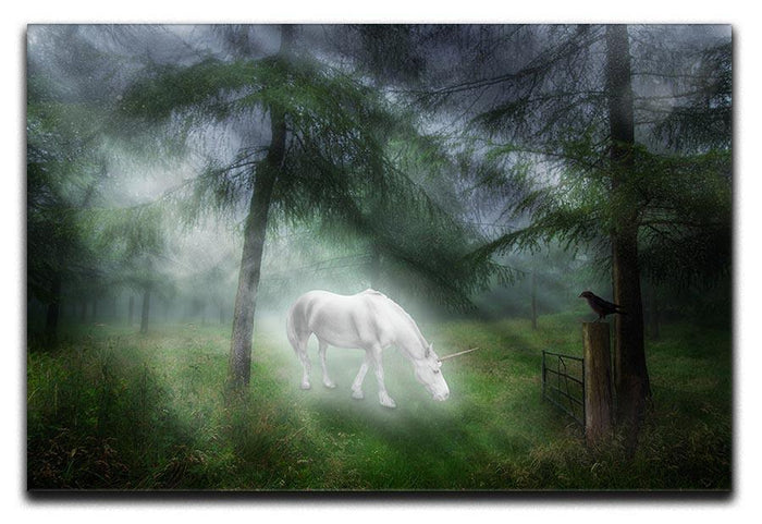 Unicorn in a magical forest Canvas Print or Poster