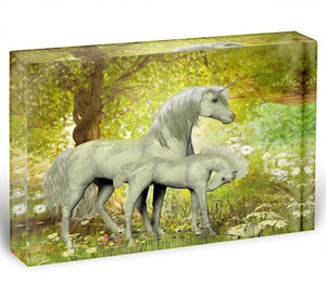 Unicorns and White Daisies Acrylic Block - Canvas Art Rocks - 1