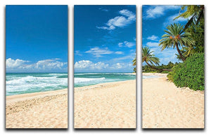 Untouched sandy beach with palms trees 3 Split Panel Canvas Print - Canvas Art Rocks - 1