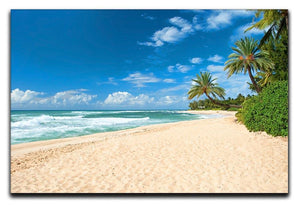 Untouched sandy beach with palms trees Canvas Print or Poster - Canvas Art Rocks - 1